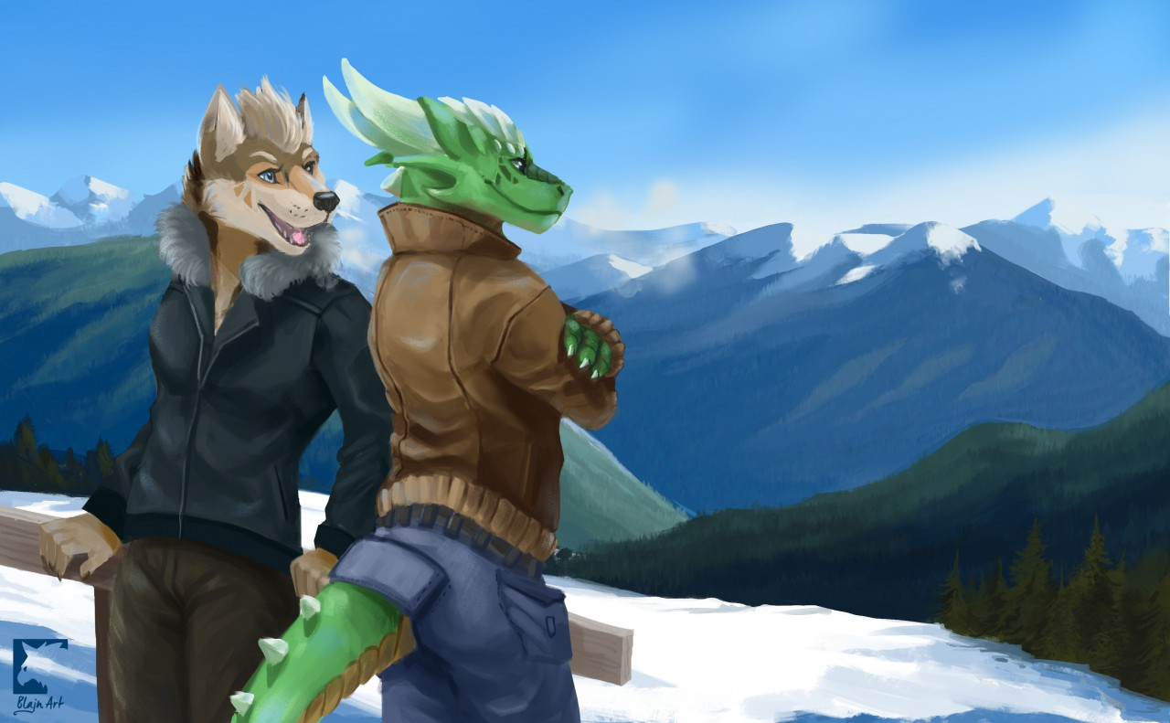 Mountain friends commission